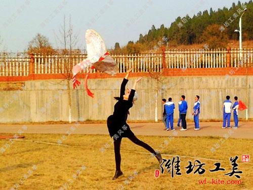 潍坊风筝厂DIY风筝放飞活动